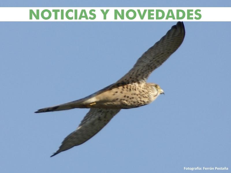 Banner Noticias y Novedades